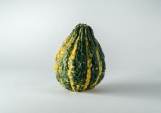 Fall Gourd Stock Photography