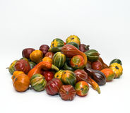 Fall Gourds. Autumn craft gourds against a white background royalty free stock images