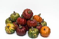 Fall Gourds. Autumn craft gourds against a white background stock photography