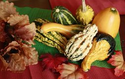 Fall Gourds and Leaves Stock Photography
