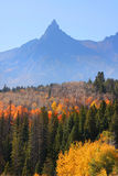 Fall in Grand Tetons Stock Photos