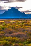 Fall in Grand Tetons Stock Photography