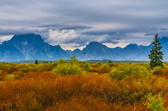 Fall in Grant Tetons Royalty Free Stock Images