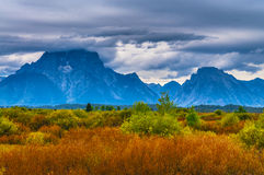 Fall in Grant Tetons Stock Photography
