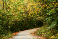 Fall Gravel road Royalty Free Stock Images