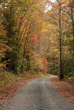 Fall Gravel Road Stock Photos