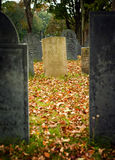 Fall graveyard Royalty Free Stock Photo