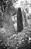 Fall graveyard in black and white Stock Photo