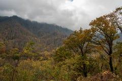 Fall at the Great Smoky Mountains National Park Stock Photos