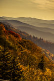 Fall in Great Smoky Mountains National Park Royalty Free Stock Image