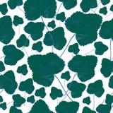 Fall green leaves, seamless pattern. Fall green leaves on a white background, seamless pattern Royalty Free Illustration