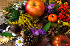 Fall greeting with cones and apple on wooden table Royalty Free Stock Photography