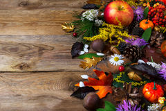 Fall greeting with cones and leaves on wooden table Stock Photos