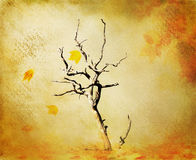 Fall grunge background Royalty Free Stock Image