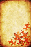 Fall Grunge Background. Grunge background with autumn leaves, and lots of copy-space.  Combines textures of paper and stone Stock Image