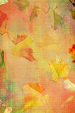Fall Grunge color texture Stock Photos