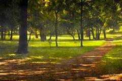 Fall höstpark Royaltyfria Foton