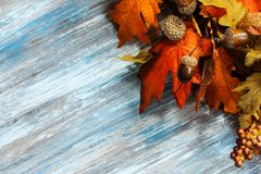 Fall and halloween Background Royalty Free Stock Images