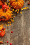 Fall and halloween Background stock images