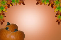 Fall Halloween Thanksgiving Border stock photos