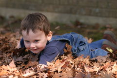 Fall hapiness. A young boy plays in the fall leaves Royalty Free Stock Images
