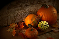 Fall harvest. Pumpkins and gourds at the door ready for halloween Stock Images