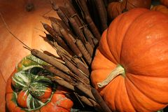 Fall Harvest Royalty Free Stock Image
