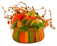 Fall Harvest. ~ Pumpkins & Squash in Multicolored Basket with Fall Berries ~ Includes Clipping Path Royalty Free Stock Images