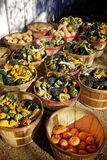 Fall Harvest. Baskets of Squash, Gourds, and Pumpkins Royalty Free Stock Image