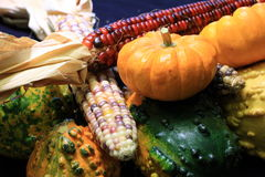 Fall Harvest Stock Photography
