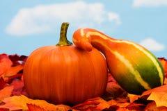 Fall Harvest Royalty Free Stock Photos