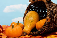 Fall Harvest Royalty Free Stock Photos