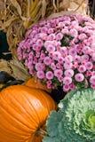 Fall Harvest stock photos