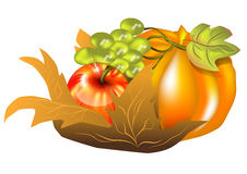 Fall harvest Stock Images
