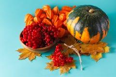 Fall harvest on aquamarine shadowless background Royalty Free Stock Photos