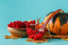 Fall harvest on aquamarine shadowless background Stock Images