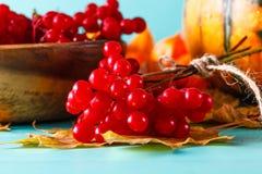 Fall harvest on aquamarine shadowless background Stock Image