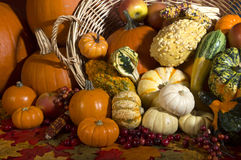 Fall harvest. Autumn harvest of fruit and vegetablrs stock photo