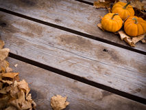 Fall harvest background. With wood and pumpkins Stock Image