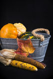 Fall harvest background with pumpkins Stock Photography