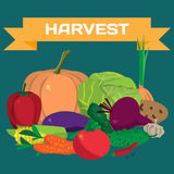 Fall harvest background with space for text. Autumn food festiva Royalty Free Stock Photos
