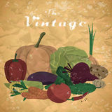 Fall harvest background with space for text. Autumn food festival. Pile of fresh vegetables. Vector flat cartoon illustration in vintage style Royalty Free Stock Image