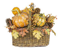 Fall Harvest Basket Isolated Royalty Free Stock Photos