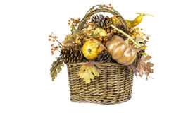 Fall Harvest Basket Isolated Royalty Free Stock Image