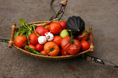 Fall harvest basket with tomatoe Royalty Free Stock Images