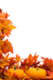 Fall Harvest Border stock photography