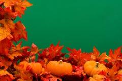 Fall Harvest Border Stock Photos