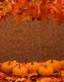 Fall Harvest Border Stock Photos