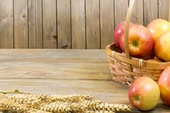 Fall harvest close up colorful frame or banner stock photography