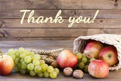 Fall harvest close up colorful frame or banner royalty free stock photo